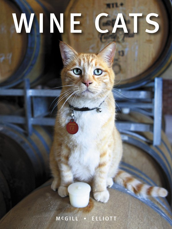 Everyone loves a winery cat