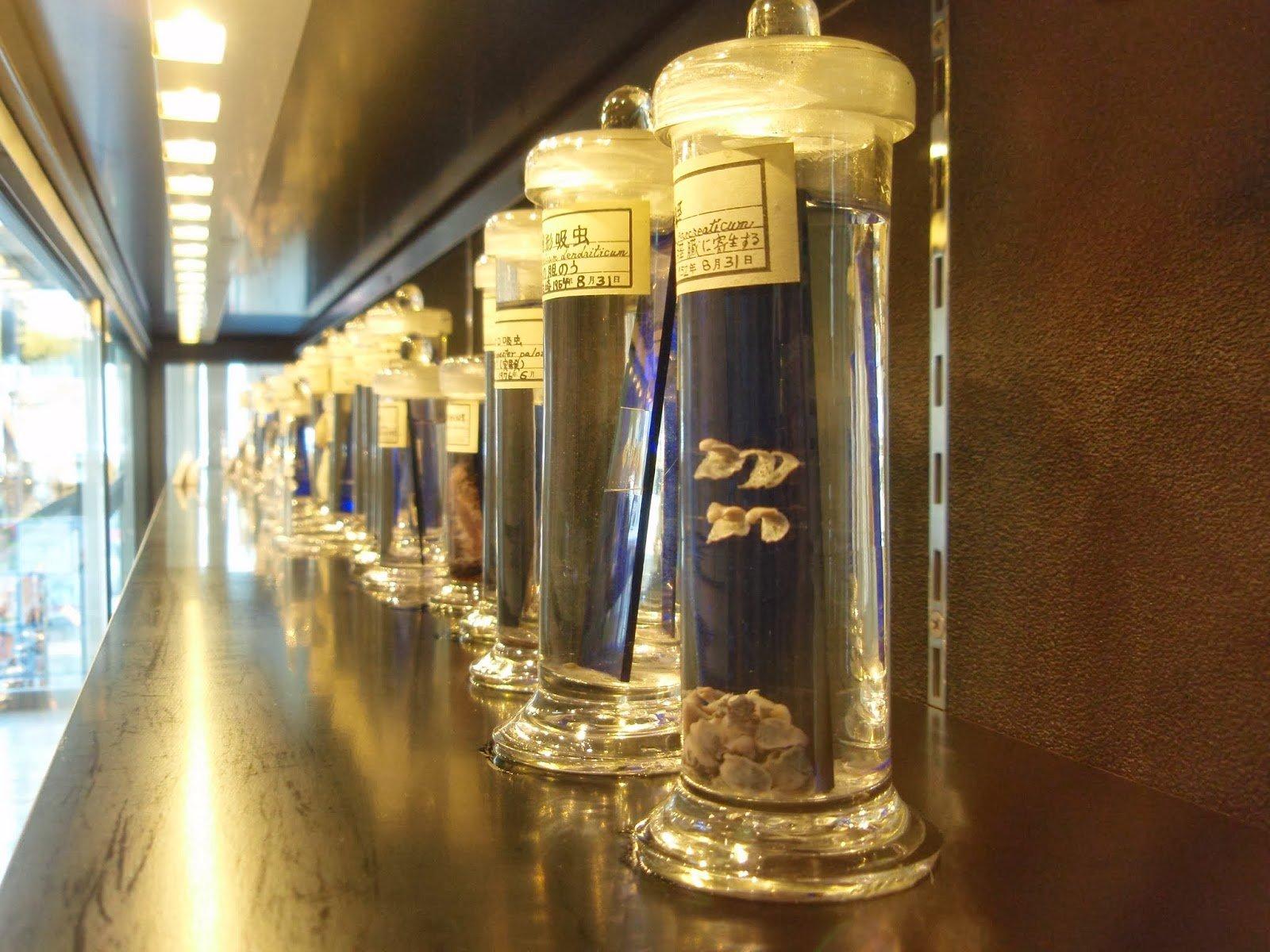 Meguro Parasitological Museum, Japan