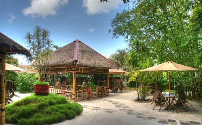 Garden of Eden, Paramaribo