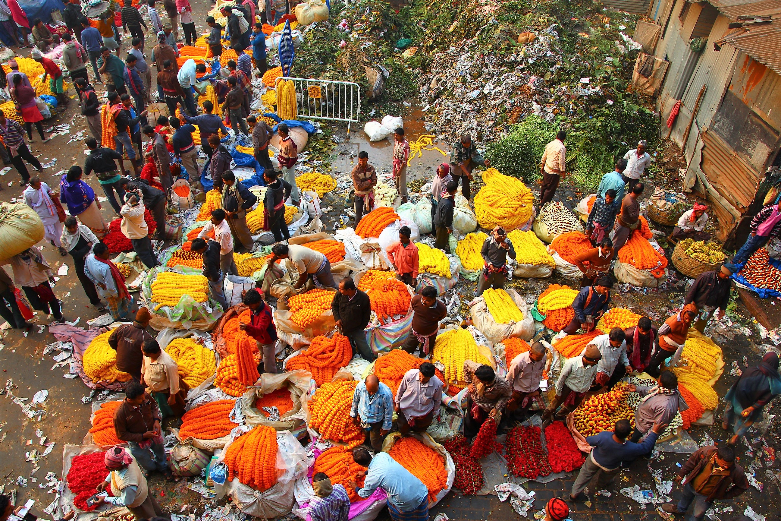 Delhi  and Kolkata flower markets. Photo credit: Crooked Compass