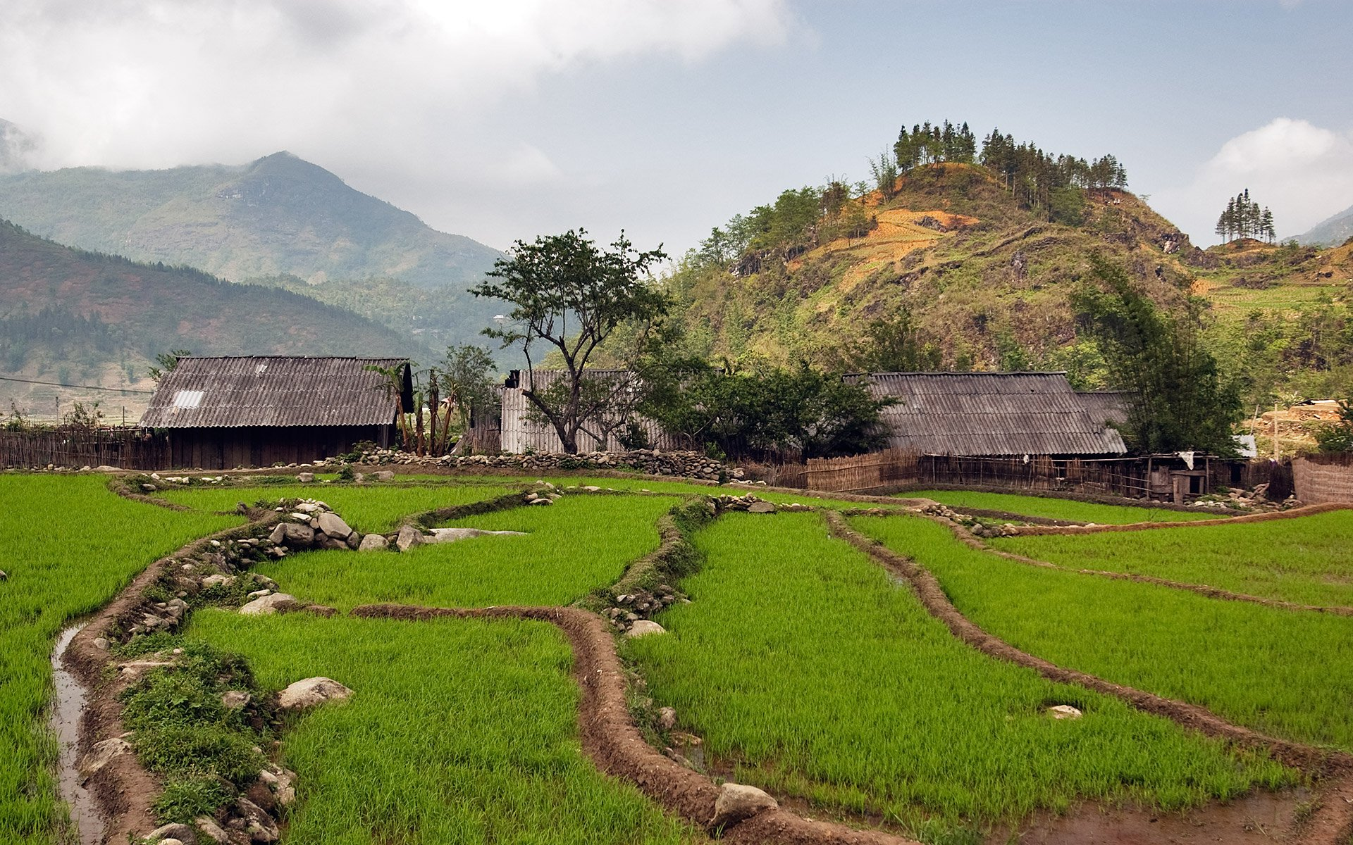 Ban Pho Village - Lesser known Sapa
