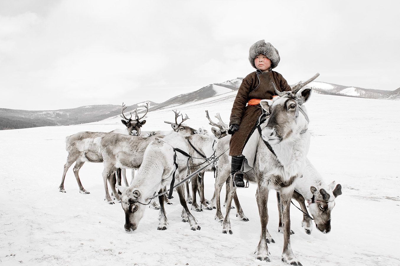 A Tsaatan child rides his reindeer in winter.