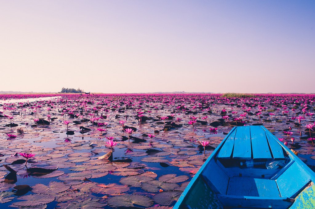 Tambon Chiang Haeo, Lotus Lake Crooked Compass Thailand