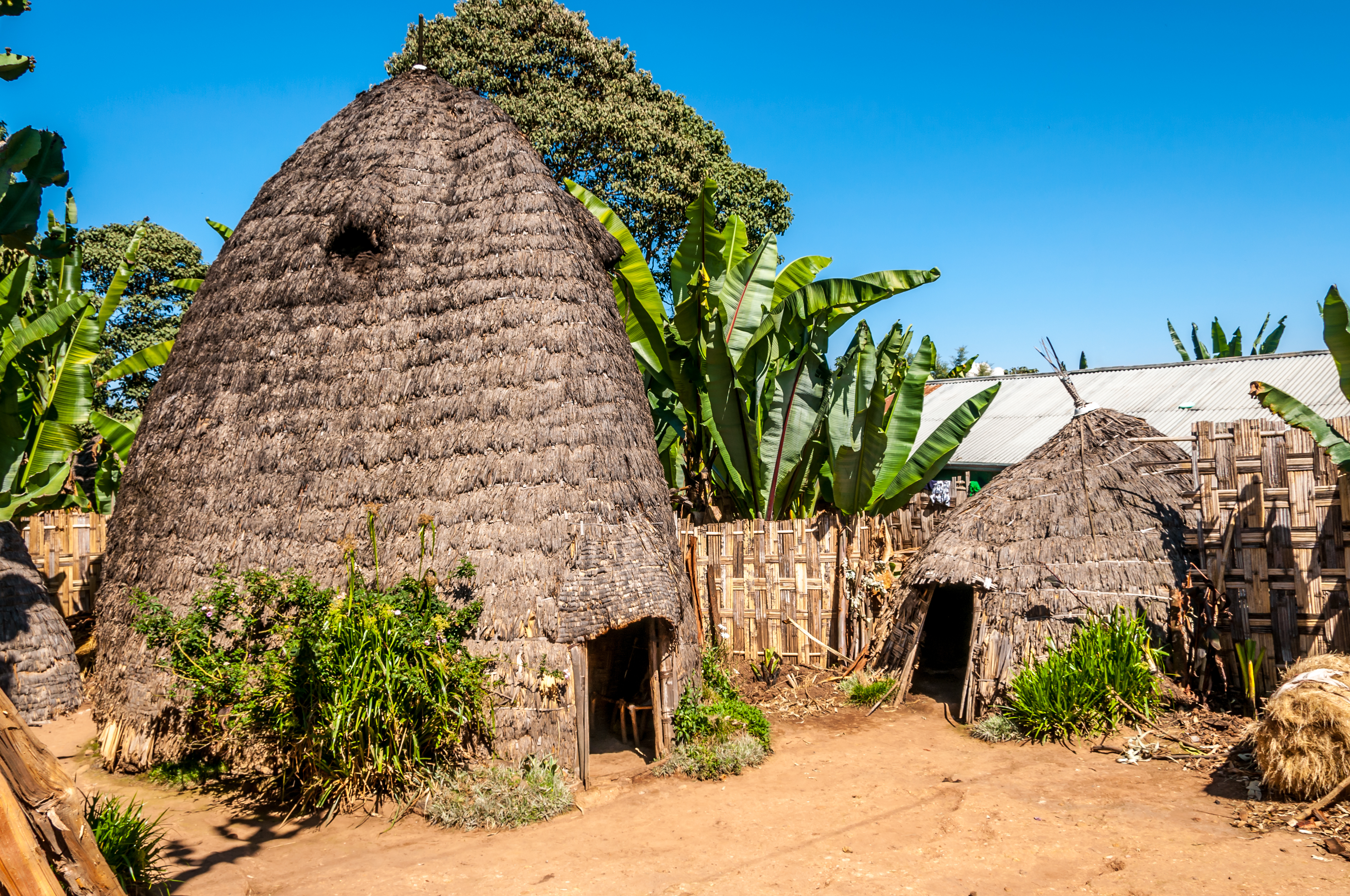 Dorza hut
