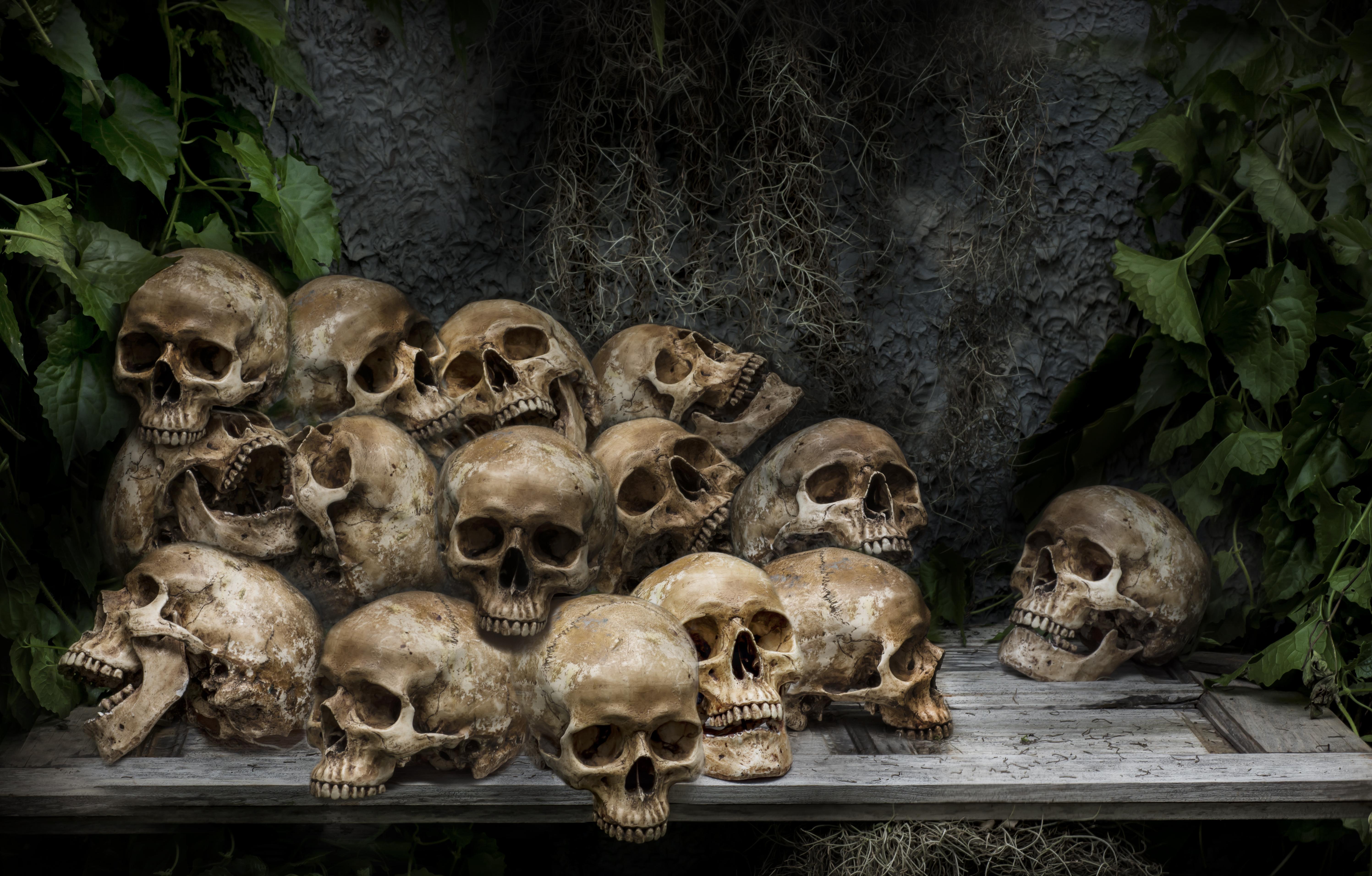 Genocide skulls