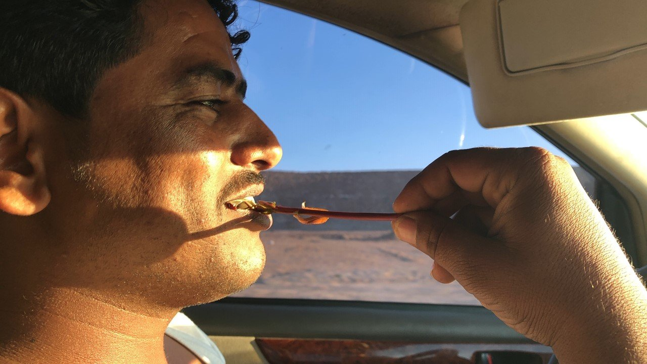 Drivers chewing cat, a plant based stimulant. Photo credit: Lisa Pagotto