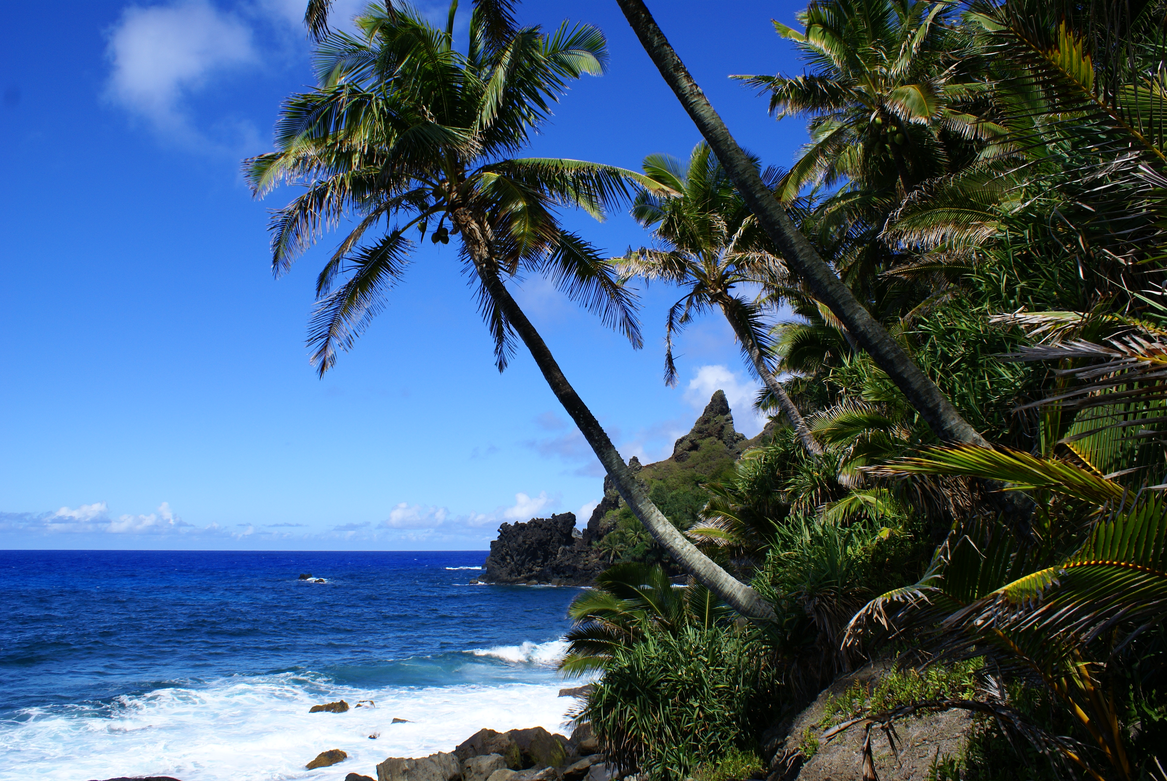 Rugged coastline of Pitcairn Island - Photo Credit: Andrew Christian