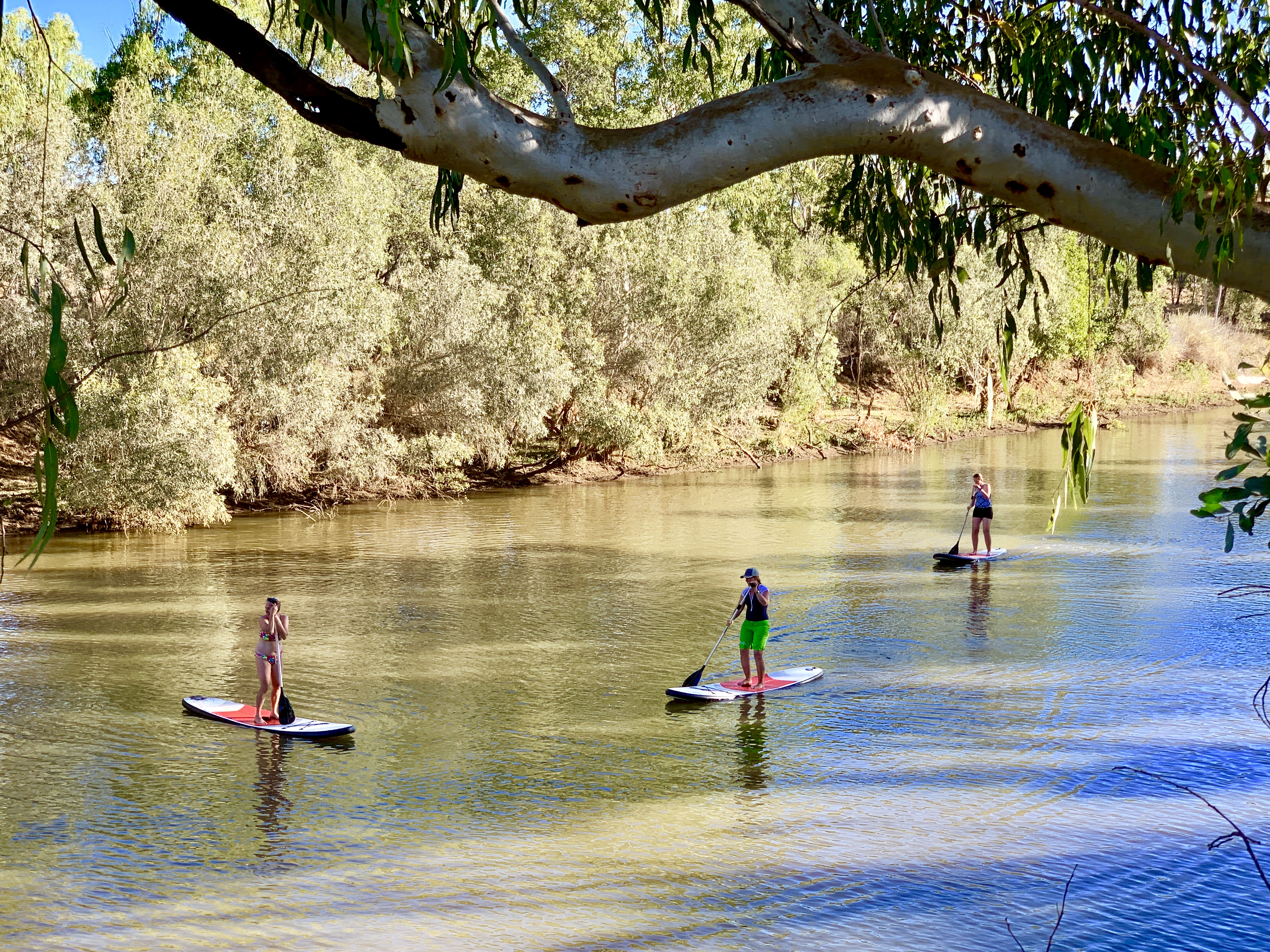 Paddle boarding in outback billabongs and rivers. How Australian!