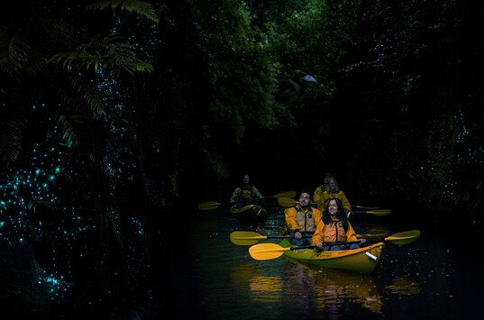 Kayaking by the illumination of glow worms - simply magical.